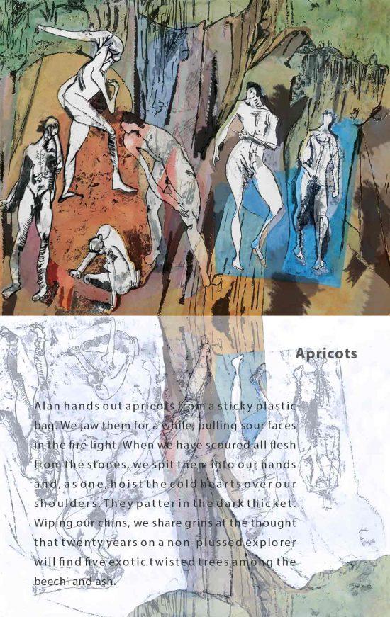 Apricots, 2016, digital art, flash fiction