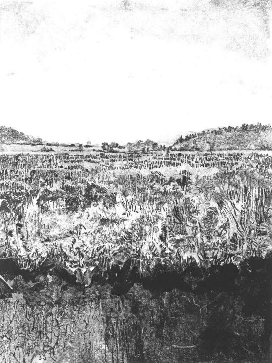 The Bog, 2014, monoprint
